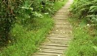 我的關鍵詞 無尾港水鳥保護區-宜蘭旅遊景點 旅遊,景點,生活 生活 link1p2_1