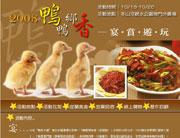 2008鴨鄉鴨香─宴賞遊玩