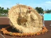 2002三星蔥蒜節