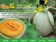 2011壯圍哈密瓜節